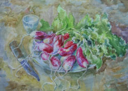 Radishes. 2000. Watercolour on paper. 41 x 30 cm.