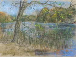 Autumn at the lake Schlachtensee. 2017. Pastel on paper. 31 x 24 cm.
