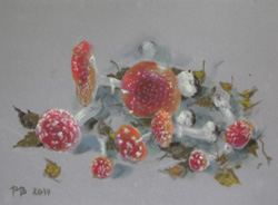 Fly agarics. 2017. Pastel on paper. 40 x 30 cm.